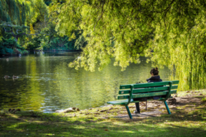 woman on bench in park with low tree branches