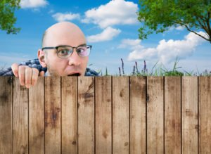 can you make your neighbor trim their trees